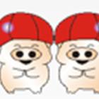 贺州双胞胎饲料有限公司